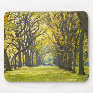 Central Park Mousepad Muismatten