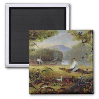 Charles Waterton die een kaaiman, 1825-26 vangen Vierkante Magneet