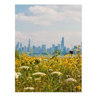 Chicago zoals die van de vogel van de Haven wordt Briefkaart