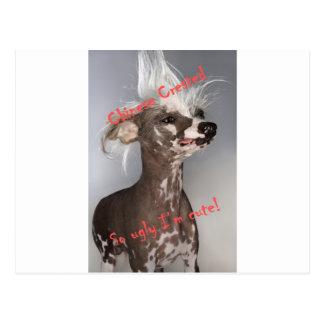Chinese Kuif zo Lelijk ben ik Leuk Briefkaart