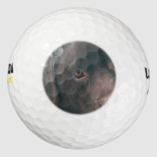 chocolade-laboratorium-14 golfballen