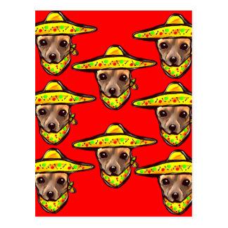 Cinco DE Mayo Chihauhaus Briefkaart