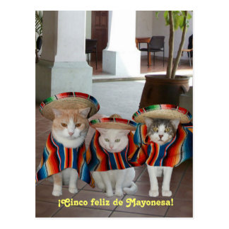 Cinco DE Mayo Gatos Briefkaart
