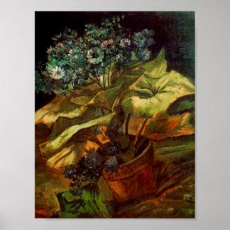 Cineraria in een Bloempot, Van Gogh Fine Art. Poster