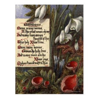 Circa 1890: Sneeuwklokjes Briefkaart