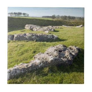 Cirkel van de Steen van de as de Lage in de foto Keramisch Tegeltje