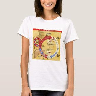 Cirkel van het Leven T T Shirt