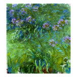 Claude Monet: Agapanthus Poster