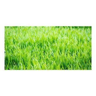 Close-up op grassprietjes kaart
