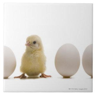Close-up van een babykuiken met drie eieren keramisch tegeltje