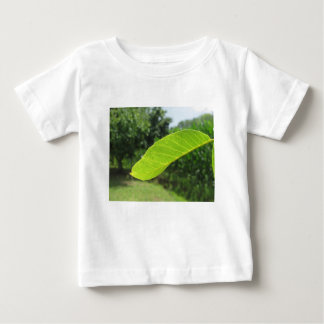 Close-up van okkernootblad door zonlicht wordt baby t shirts