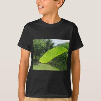 Close-up van okkernootblad door zonlicht wordt t shirt