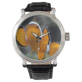 clownfish onder ogen ziend voorzijde horloges
