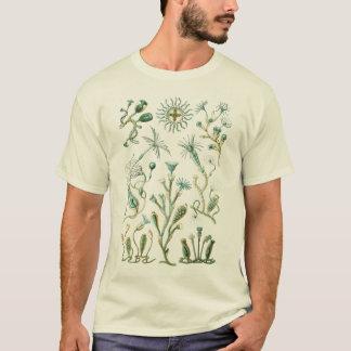 Cnidaria - steken-Cellige dieren T Shirt