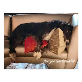 Comfortabel Briefkaart Borzoi