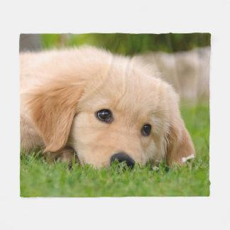Comfortabel Dromen van het Puppy van het golden Fleece Deken