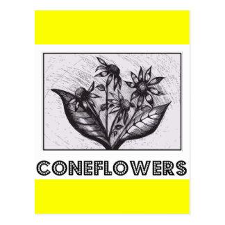 Coneflowers Briefkaart