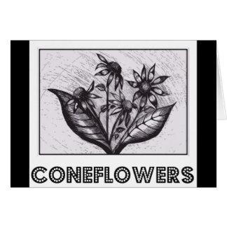 Coneflowers Wenskaart