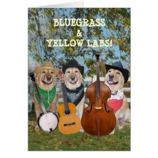 Country muziek & de Klantgerichte Verjaardag van Kaart