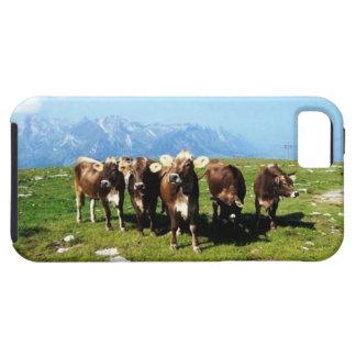 Cowing rond het Hoesje van iphone van Alpen 5/5S