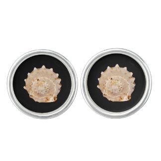 Cufflinks van Shell van de kroonslak Zilveren Manchetknopen