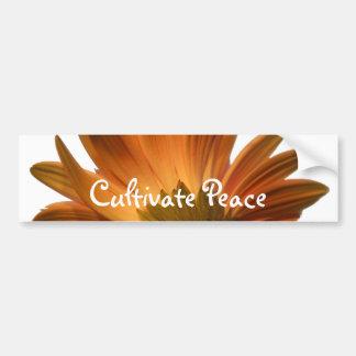 Cultiveer Vrede Bumpersticker