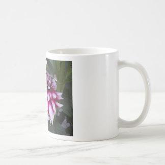 Dahlia Koffiemok