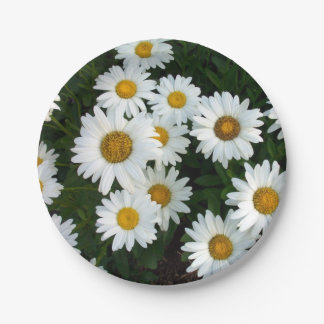 Daisy Delight Paper Plates Papieren Bordje