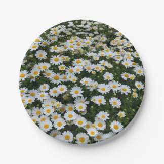 Daisy Field Paper Plates Papieren Bordje