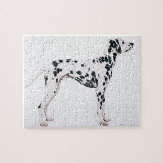 Dalmatian 3 legpuzzel
