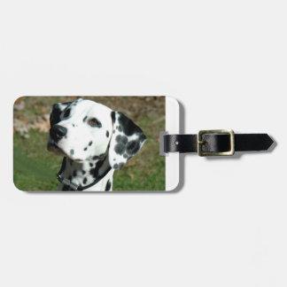 dalmatian.png bagagelabel
