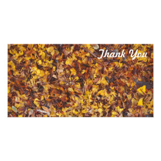 Dank u fotokaart - de draagstoel van het Blad Kaart