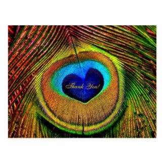 Dank u het Oog van de Veren van de Pauw van Liefde Briefkaart