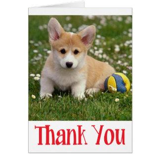 Dank u (Pembroke) de Kaart van de Nota van de Hond