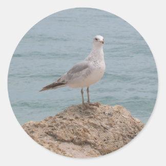 De 2134) Ronde Sticker Eenzame van de Zeemeeuw (