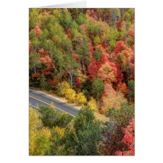 De Aandrijving van de herfst door de Canion van Wenskaart