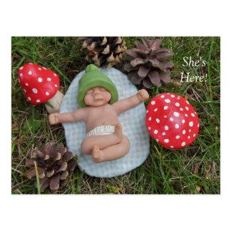 De Aankondiging van de geboorte: Het Baby van de Briefkaart
