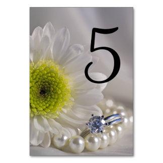 De Aantallen van de Lijst van het Huwelijk van de