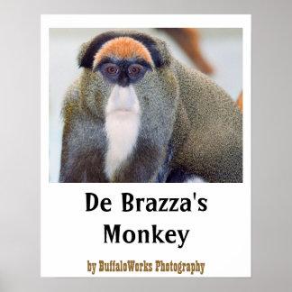 De aap staart Poster
