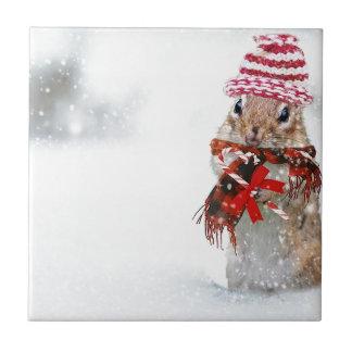 De Aardeekhoorn van de winter breit de Rode Keramisch Tegeltje
