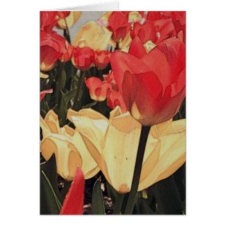 De abstracte Kaarten van de Nota van Tulpen