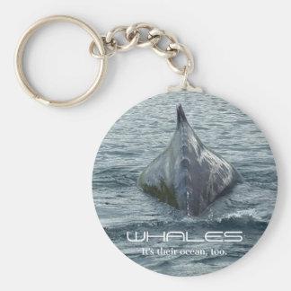 De Achter en Dorsale Vin van de walvis Sleutelhanger