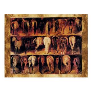 De Achterdelen van paarden Wenskaart