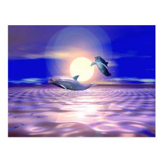 De Afleidingsactie van de dolfijn Briefkaart