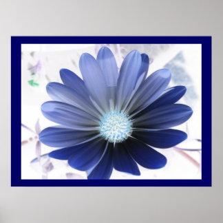 De Afrikaanse Blauwdruk van Daisy Glowing Poster
