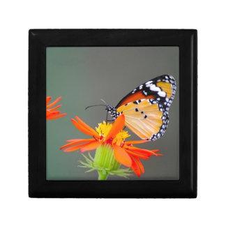 De Afrikaanse vlinder van de Monarch op oranje Decoratiedoosje