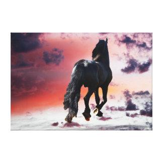 De agent zwart paard van de vrijheid canvas print