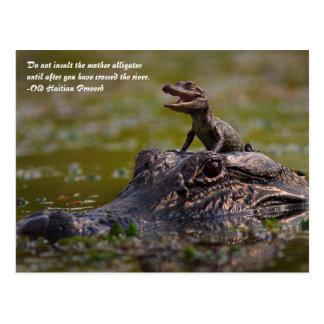 De alligator van de Moeder Briefkaart