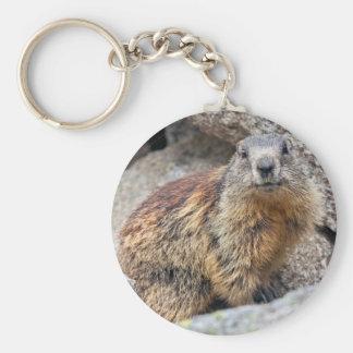 De alpiene Sleutelring van de Marmot Sleutelhanger