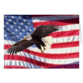De Amerikaanse Eagle en Kaart van de Nota van de